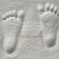 Melted Snow - CD coverart